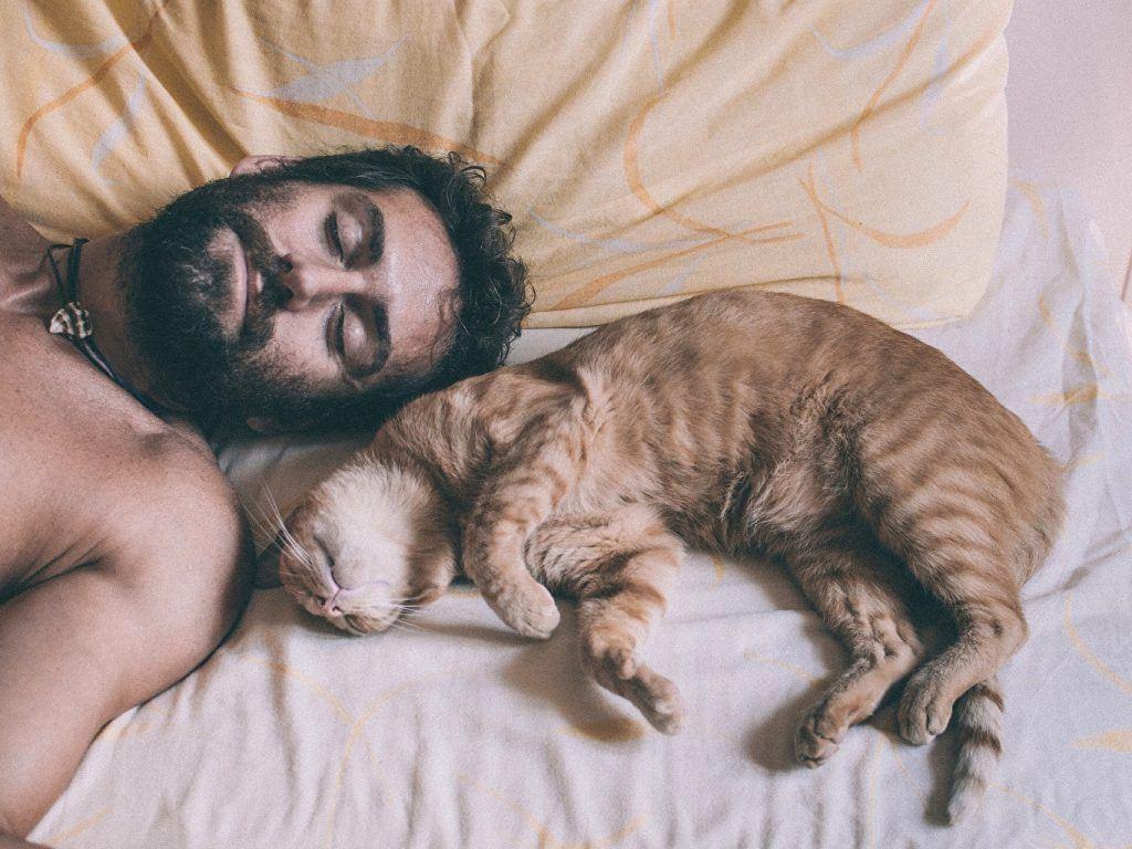 baard groeien slapen trainen