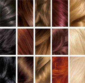 haarkleuren haartypes soorten
